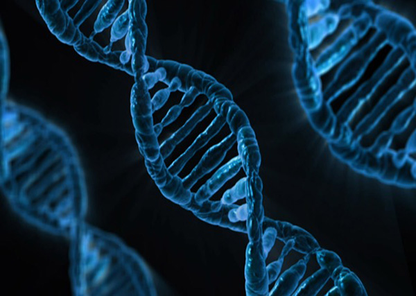 what are the reasons for genetic modification of food