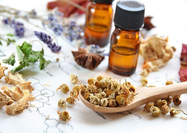 Herbs that calm anxiety