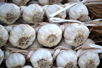 Garlic for IBS & IBD