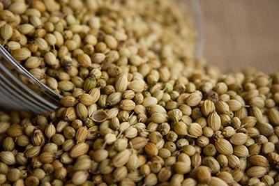 Coriander seed Oil for IBS & IBD