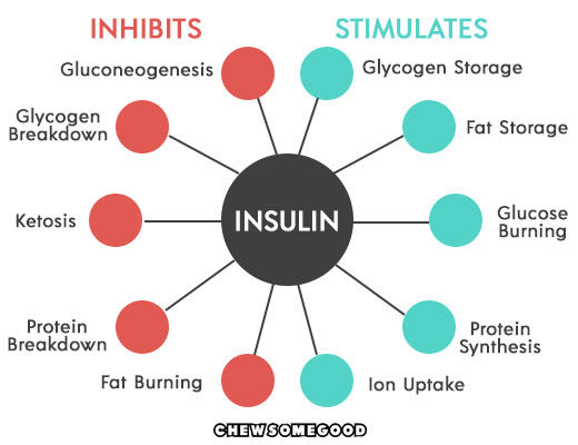How Insulin affects weight loss