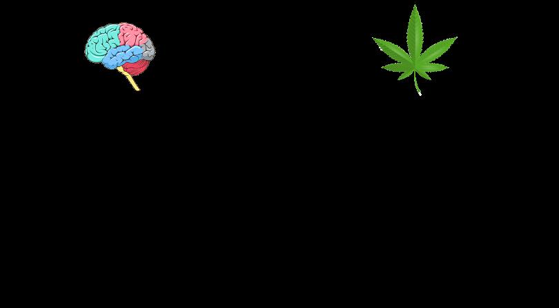 Endocannabinoids Vs Cannabinoids